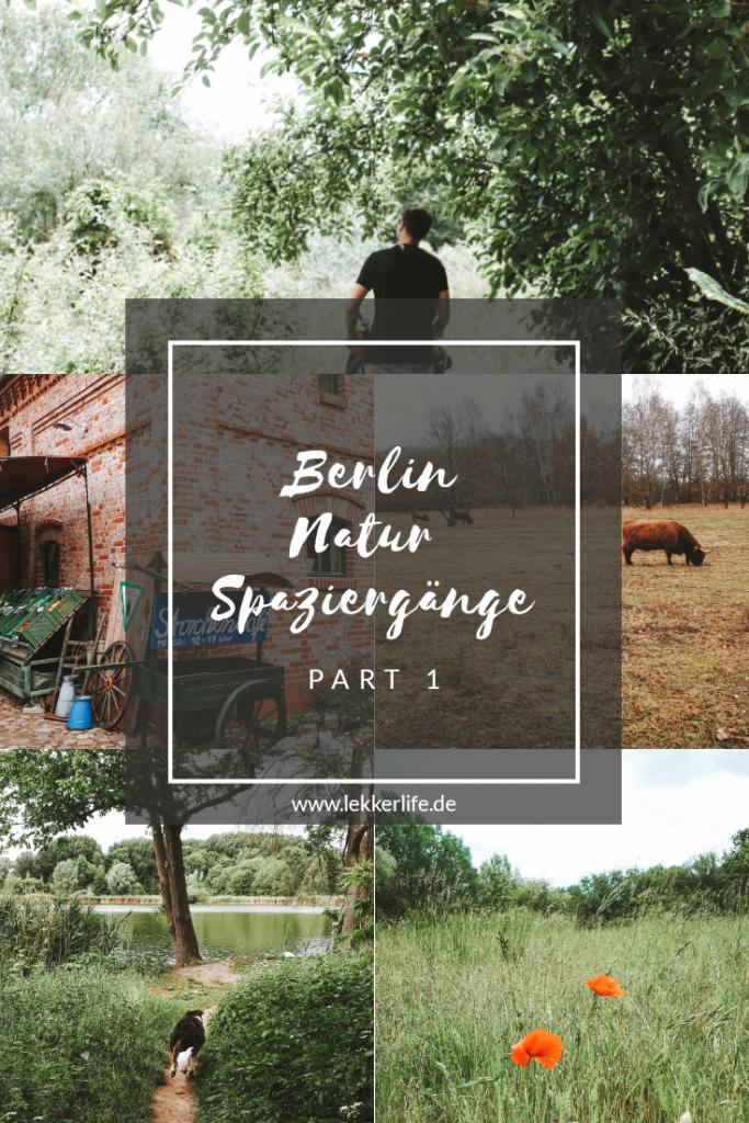 Berlin Natur Spaziergänge