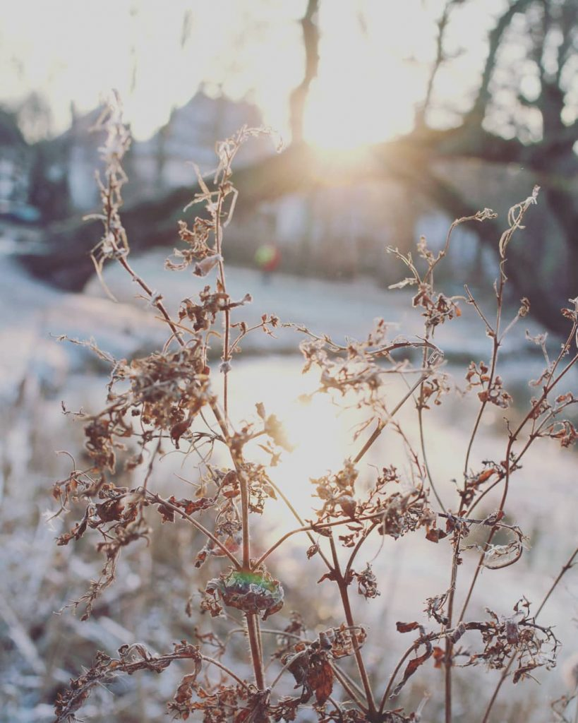 Januar Aktivitäten Schnee