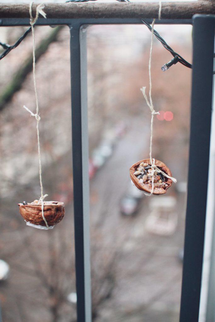 Vogelfutter selbermachen
